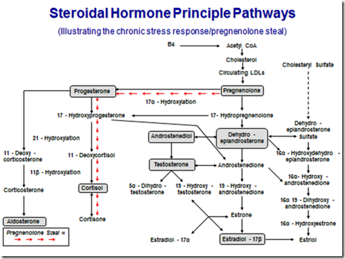 Hormone & Adrenal Testing image1