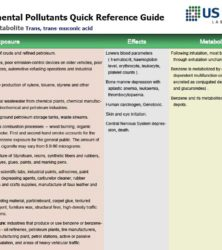 environmental pollutants image